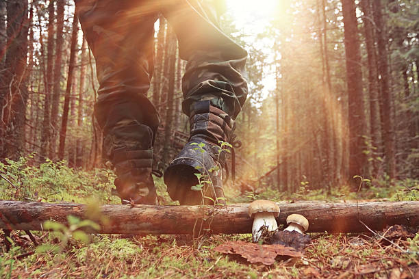 Types Of Hunting Boots