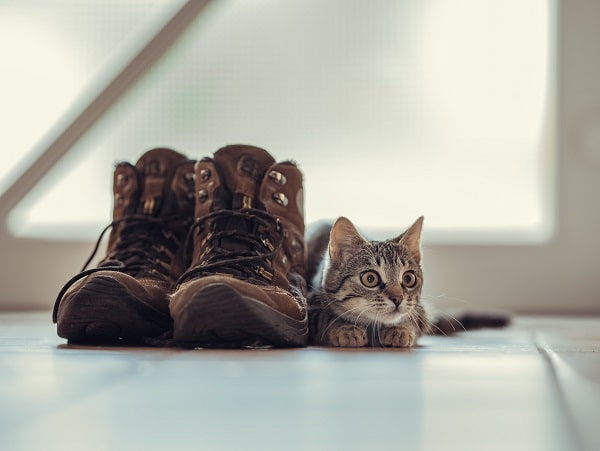 how should hunting boots fits